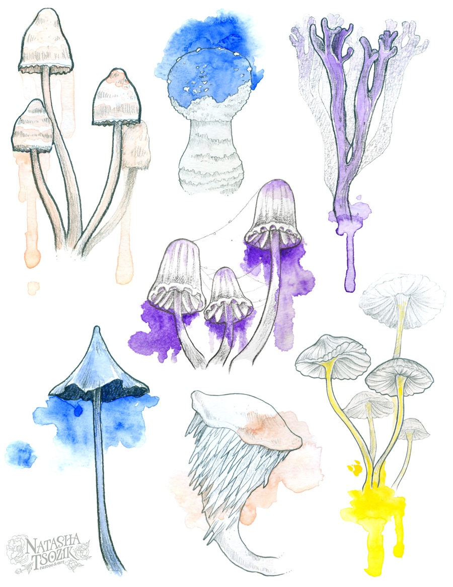 Shrooms by Natasha Tsozik