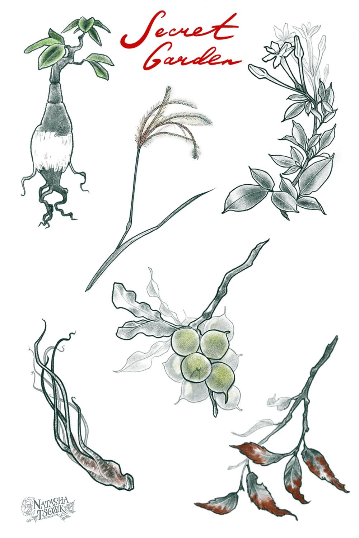 3_secret_garden_natasha_tsozik